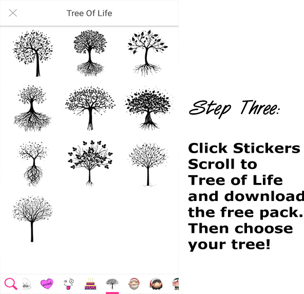 Step 3 How to Make a Tree of Life Brelfie