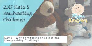 Flats and Handwashing Challenge day 1