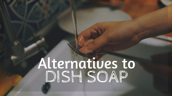 alternatives to dish soap