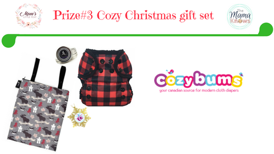 prize 2 cozy bums cloth diaper gift set