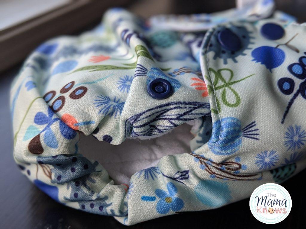 blueberry simplex cloth diaper