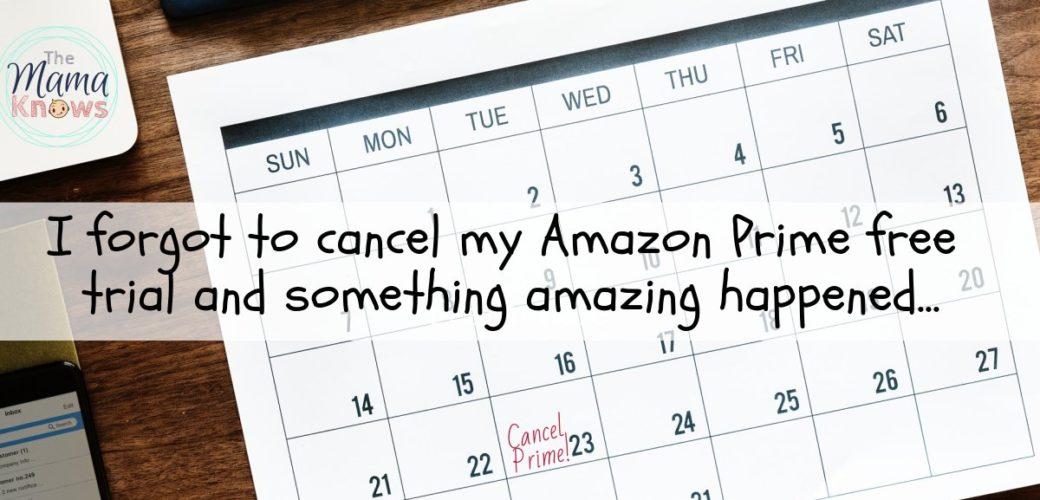 I forgot to cancel my Free Amazon Prime trial and Something Amazing Happened
